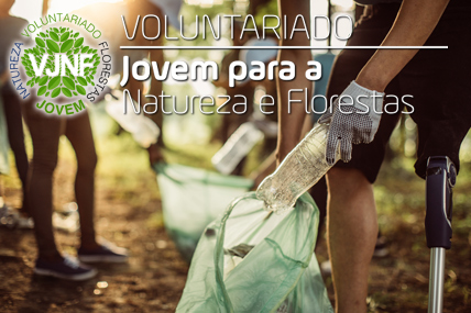 Programa Voluntariado Jovem para a Natureza e Florestas
