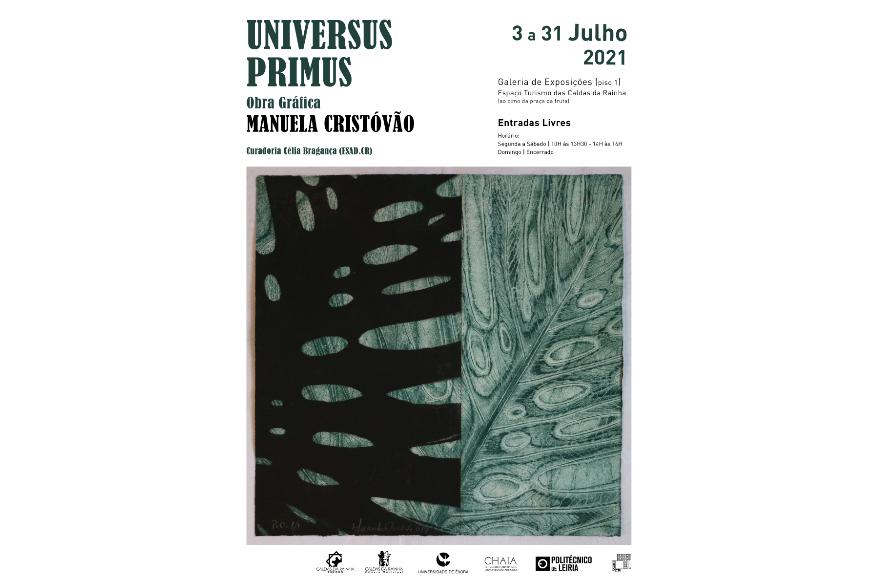UNIVERSUS PRIMUS | Exposição individual de Manuela Cristóvão | Galeria de Exposições do Espaço Turismo das Caldas da Rainha